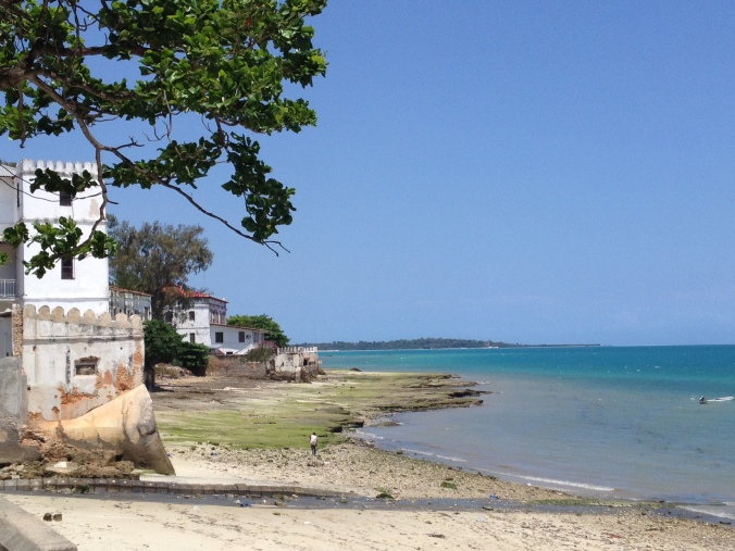 Along the coast at Stone Town.