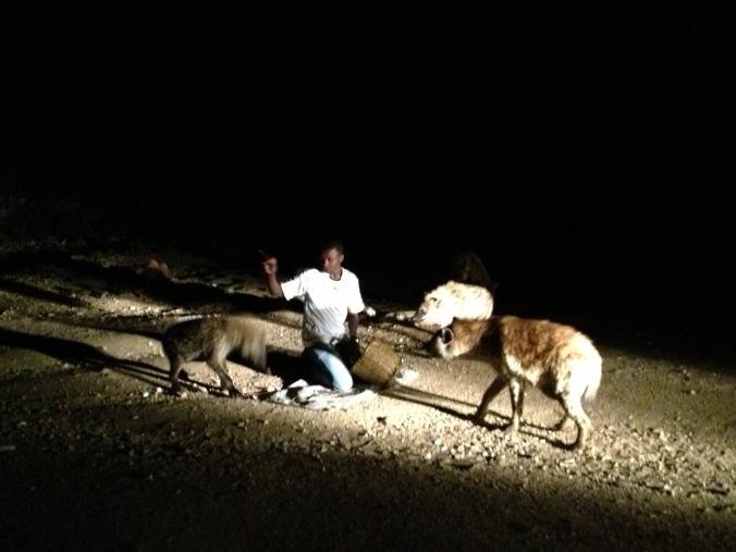 The Harar hyena man.